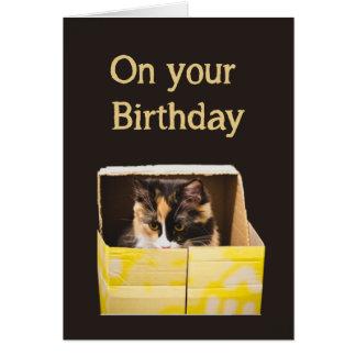 El cumpleaños desea feliz como gato en la tarjeta de felicitación