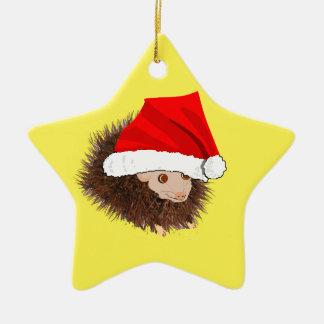 El cumpleaños lindo del erizo añade nombre adorno navideño de cerámica en forma de estrella