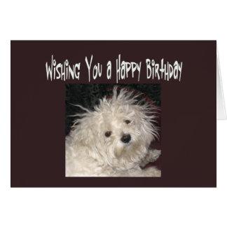 El cumpleaños maltés del humor desea la tarjeta
