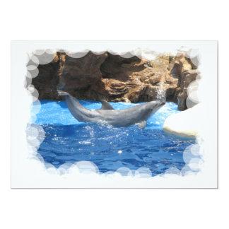 El delfín engaña la invitación