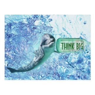 El delfín especial piensa Postcart de motivación Postal