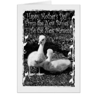 El día de madre de nuevos gemelos tarjeta de felicitación
