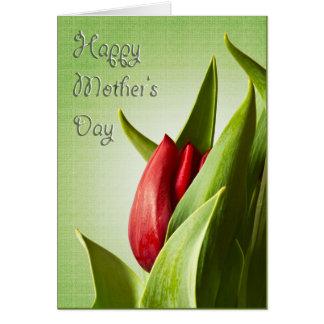El día de madre feliz - nuevo tulipán rojo tarjeta pequeña