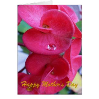 El día de madre feliz, sueños tarjeta de felicitación