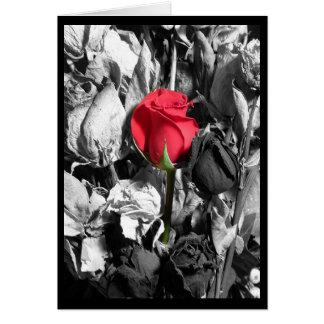 El día de San Valentín feliz Felicitación