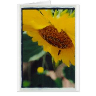 ¡El día soleado de una abeja! Tarjeta De Felicitación