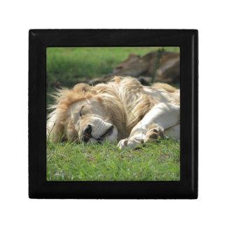 El dormir del león cajas de joyas