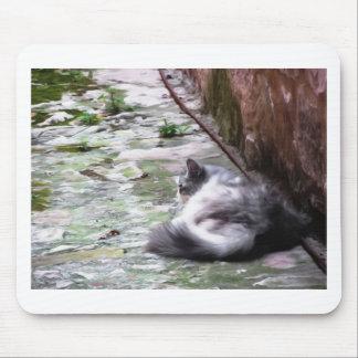El dormir mullido del gato se agacha en el piso alfombrilla de ratón
