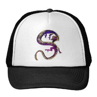 El dragón Amethyst Gorra