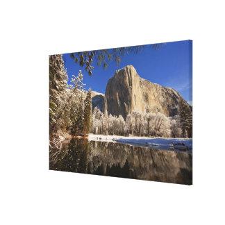 El EL Capitan refleja en el río de Merced adentro Impresion En Lona
