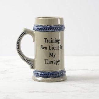 El entrenamiento de leones marinos es mi terapia jarra de cerveza