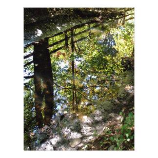 El espejo de la naturaleza folleto 21,6 x 28 cm