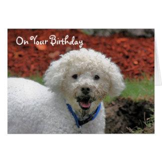 El fango hizo frente a la tarjeta de cumpleaños
