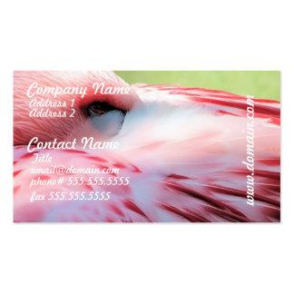 El flamenco empluma tarjetas de visita