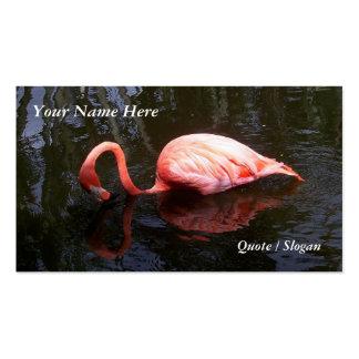 El flamenco refleja tarjetas de visita