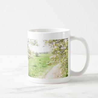 El flor panorámico ve la taza del canal