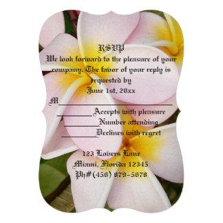 El Frangipani hawaiano de la hawaiana de RSVP flor