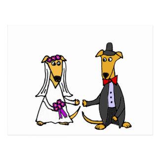 El galgo divertido persigue la novia y al novio postal