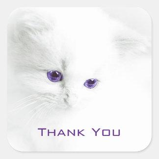 El gatito blanco suave con los ojos púrpuras le pegatina cuadrada