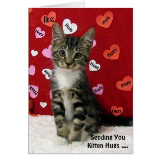 El gatito del bandido abraza la tarjeta (3335)