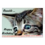 El gatito lindo dice feliz cumpleaños felicitaciones