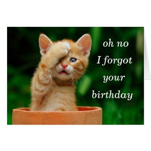 el gatito olvidó cumpleaños tarjetón
