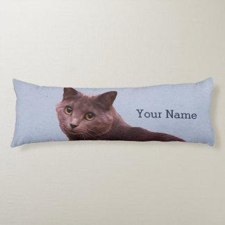 El gato azul ruso añade nombre almohada de cuerpo entero