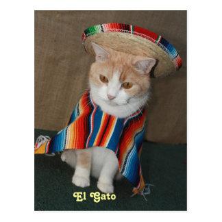 EL Gato Bubba Postal