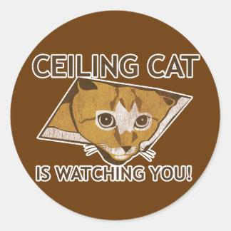 ¡El gato de Celing le está mirando! Pegatina Redonda