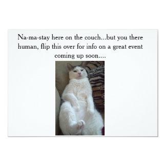 el gato de la Na-mA-estancia hace la invitación