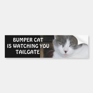 El gato de parachoques está mirando la PUERTA Pegatina Para Coche