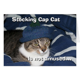 El gato del casquillo de media no se divierte tarjeta de felicitación