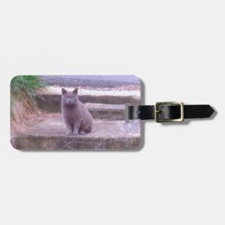 El gato del gris de los vecinos etiqueta para maletas