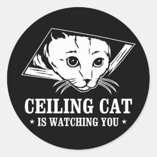 El gato del techo le está mirando etiqueta redonda