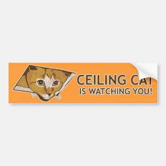 ¡El gato del techo le está mirando! Pegatina Para Coche
