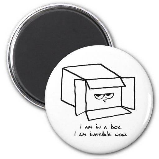 El gato enojado oculta en una caja iman de nevera