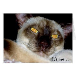 ¡El gato espeluznante desea un feliz cumpleaños! Tarjeta De Felicitación