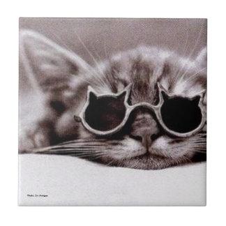 El gato más fresco vivo - baldosa cerámica