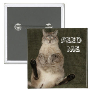 """El gato """"ME ALIMENTA"""" el botón cuadrado"""