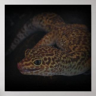 El Gecko mojado con la lengua hacia fuera imprime Posters