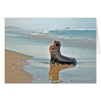 El gemelo oscila el león marino tarjeta pequeña