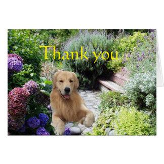 El golden retriever le agradece en la tarjeta del