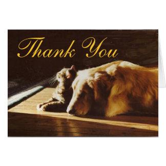 El golden retriever y el gato le agradecen cardar tarjeta de felicitación