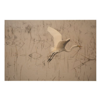 """El gran Egret 36"""" x 24"""" arte de madera de la pared"""