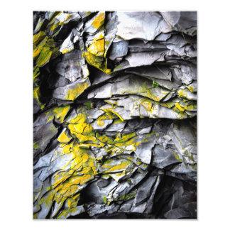 El gris cubierto de musgo oscila la foto