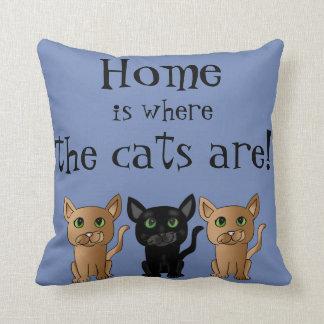 El hogar es donde están almohada los gatos del