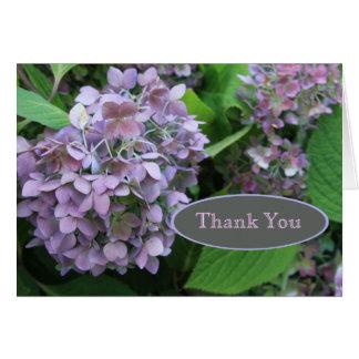 El Hydrangea azul le agradece Felicitaciones