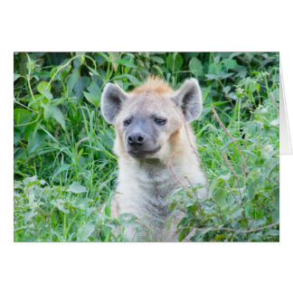 El Hyena triste está triste Tarjeta Pequeña