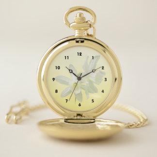 El jardín blanco del narciso florece el reloj de
