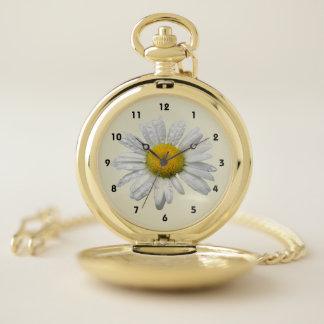 El jardín bonito de la margarita florece el reloj